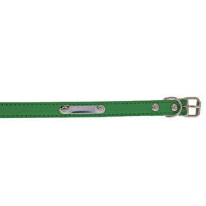 Collier avec plaque - vert