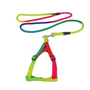 Ensemble harnais avec laisse multicolore