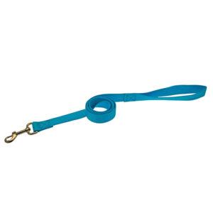 Laisse en nylon - bleu turquoise