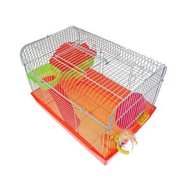 Cages et accessoires du rongeur