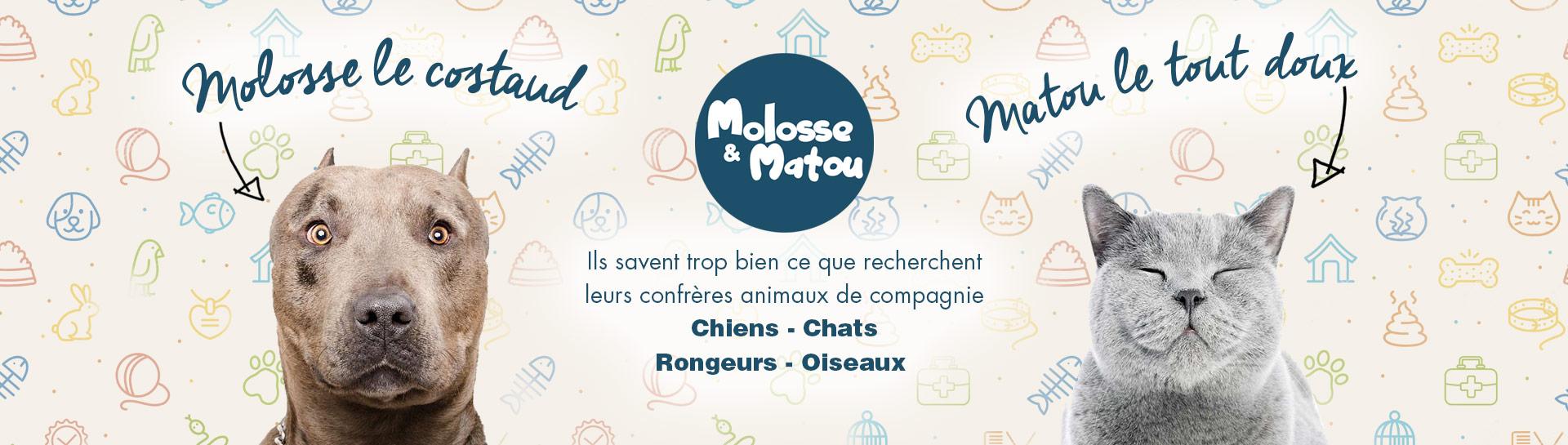 Molosse et Matou - Animalerie en ligne