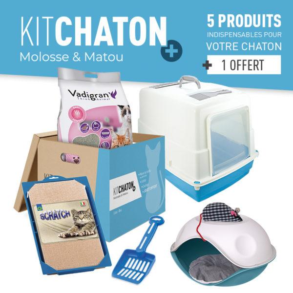 KIT CHATON + COLORIS BLEU