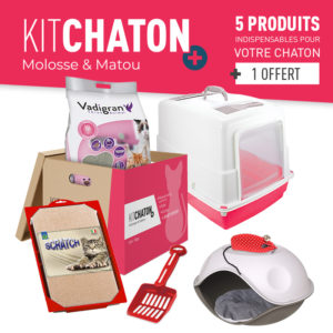 KIT CHATON + COLORIS ROUGE