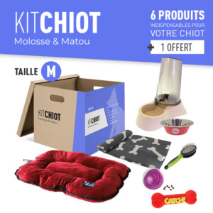 KIT CHIOT TAILLE M
