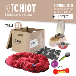 KIT CHIOT XL
