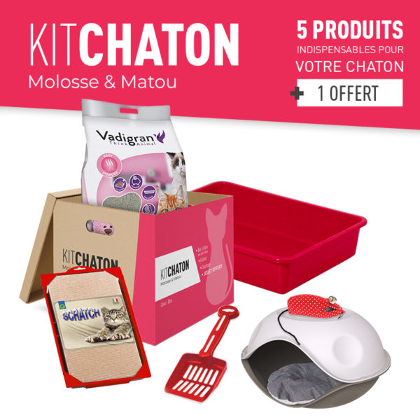 KIT CHATON COLORIS ROUGE
