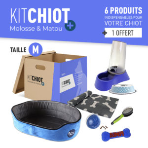 KIT CHIOT + TAILLE M