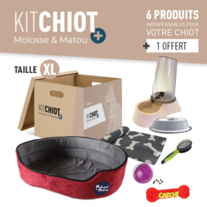 KIT CHIOT + TAILLE XL