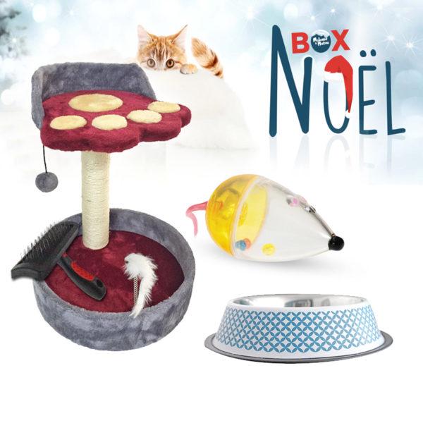 Coffret cadeau pour chat de Noël