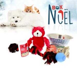Coffret-cadeau-pour-chien-de-noel